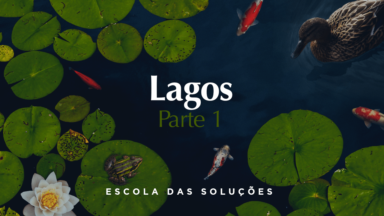 Lagos – Parte 1
