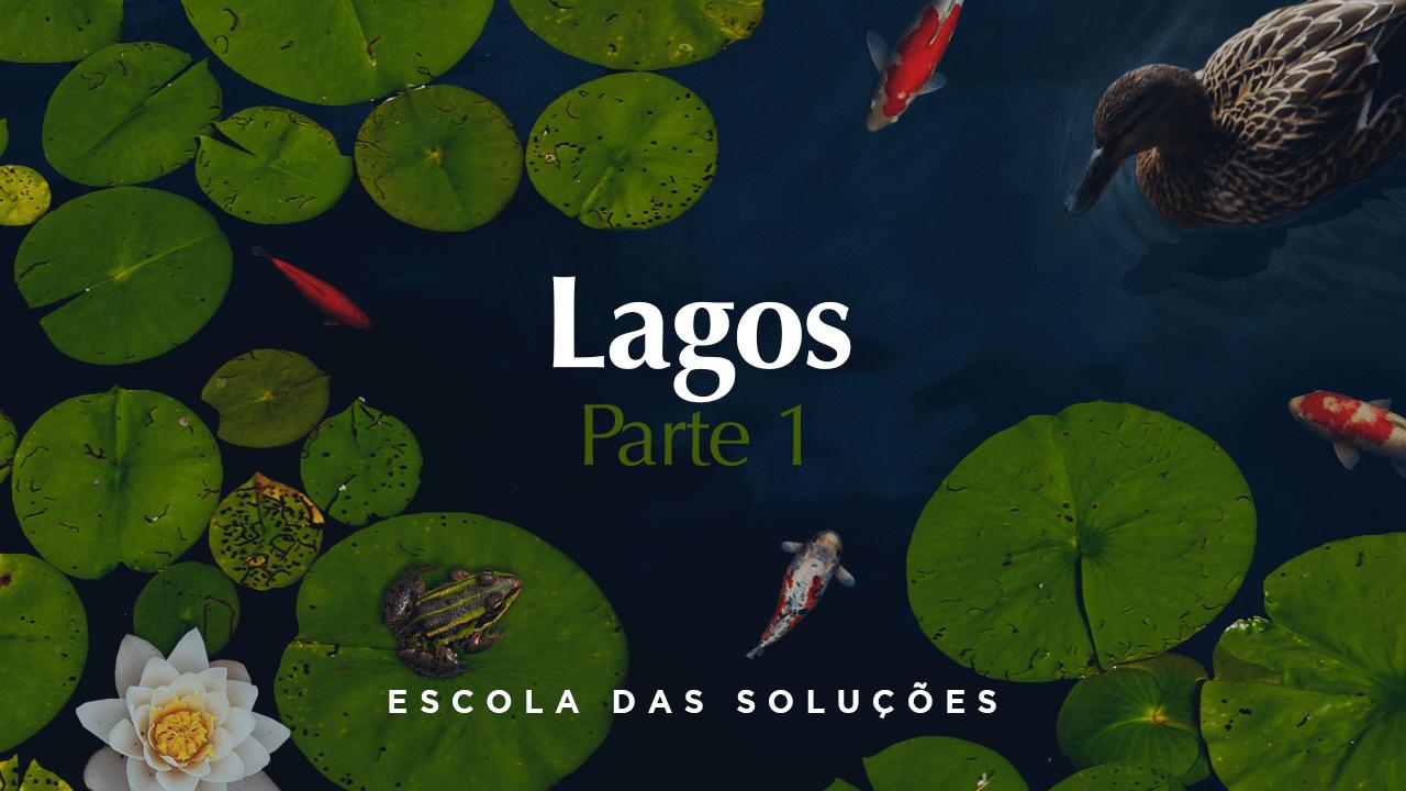Curso online Lagos