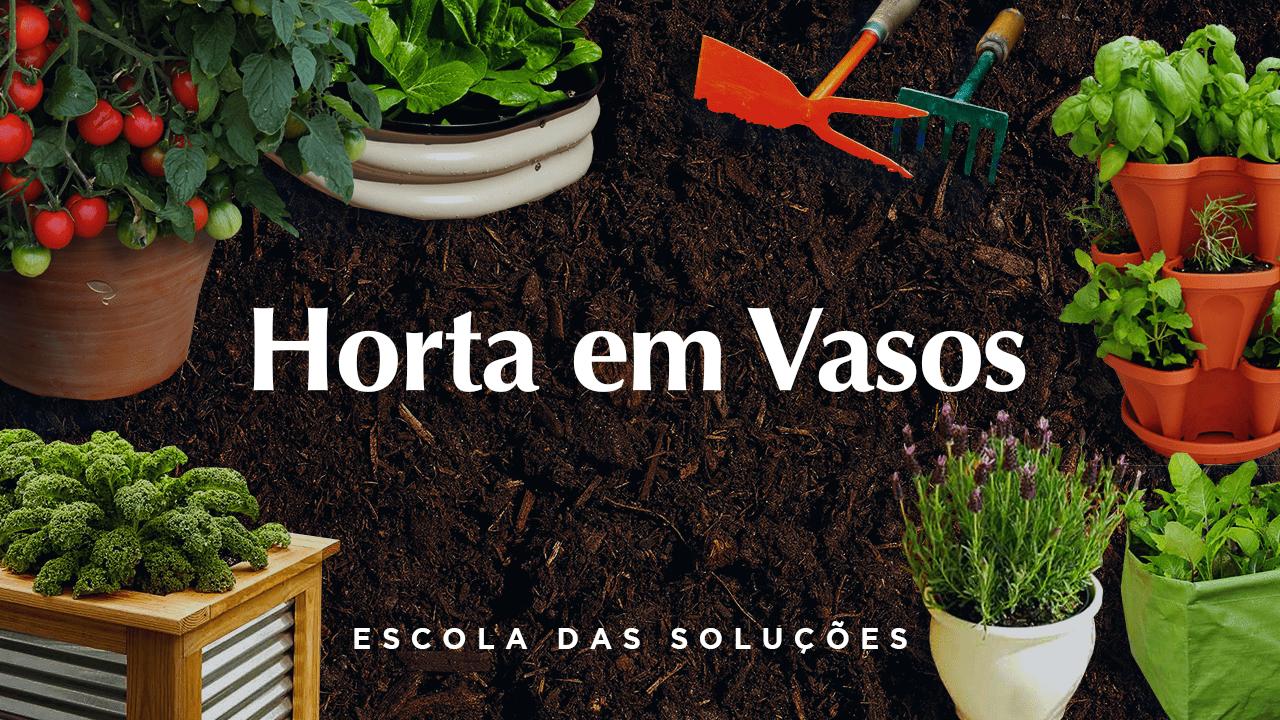 Curso Online de Horta em Vasos
